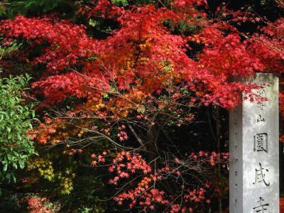 円城寺 (1)