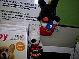 20101117LR3.jpg