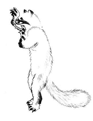hokusa4.jpg