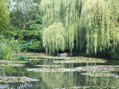 モネの池、緑のハーモニー