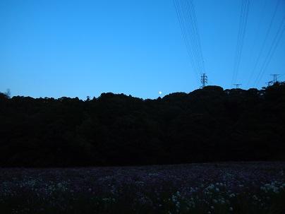 121030-14.jpg