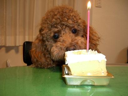 4歳誕生日1