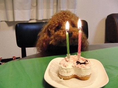 4歳誕生日4