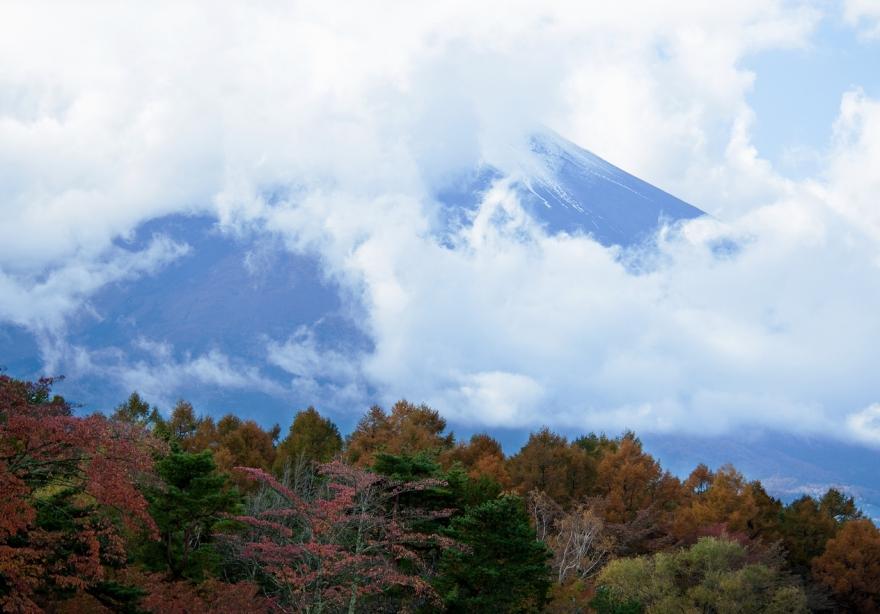 2013 11 04 山中湖紅葉 (29)@s
