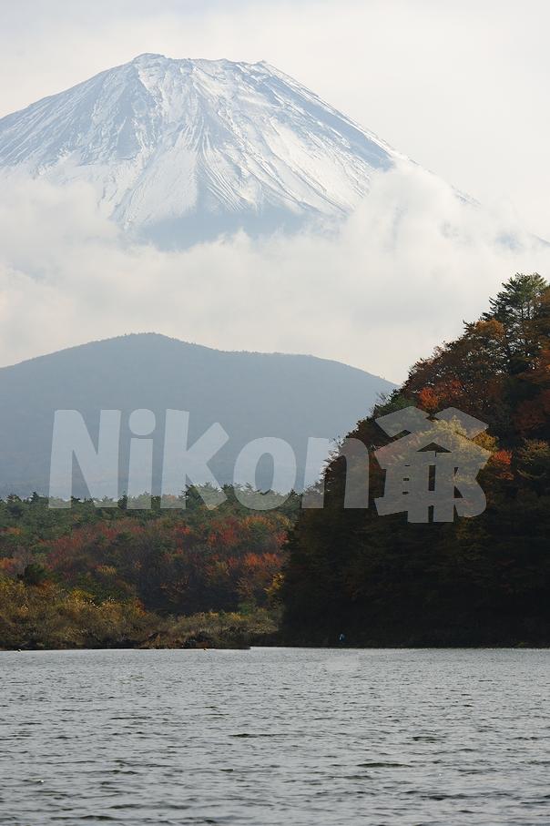 2013 11 09  精進湖 D3x (71)@s