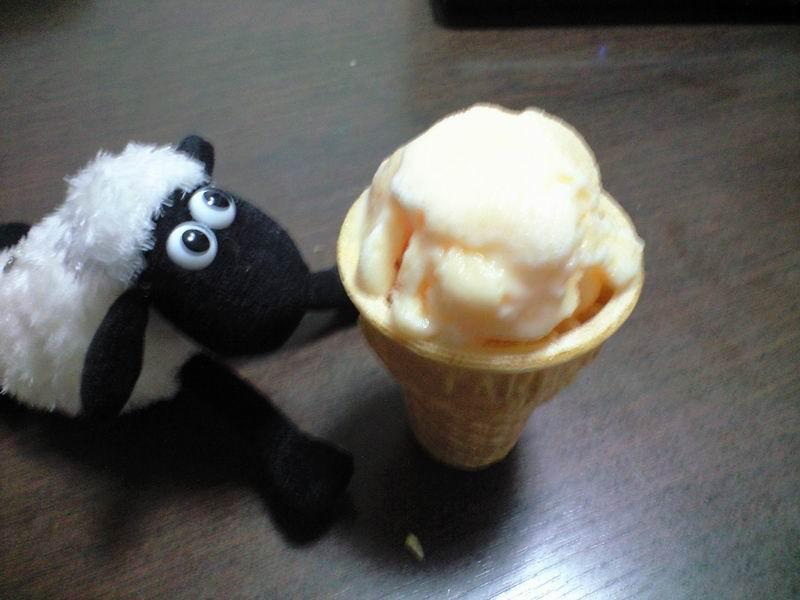 ice cream 2011