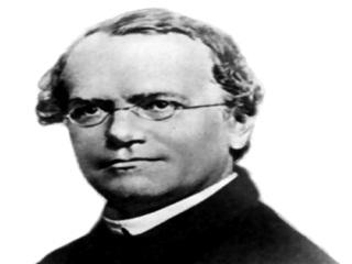Gregor_Mendel_R.jpg