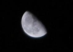 tuki20110224