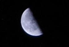 tuki20110225