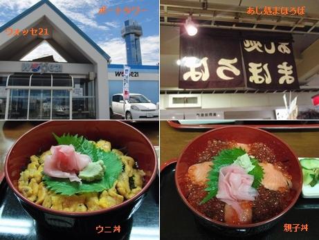 ウォッセ21とポートタワーまほろば&ウニ丼親子丼
