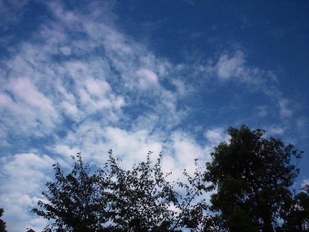 秋の雲だよね