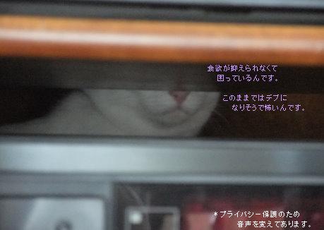0721-01.jpg
