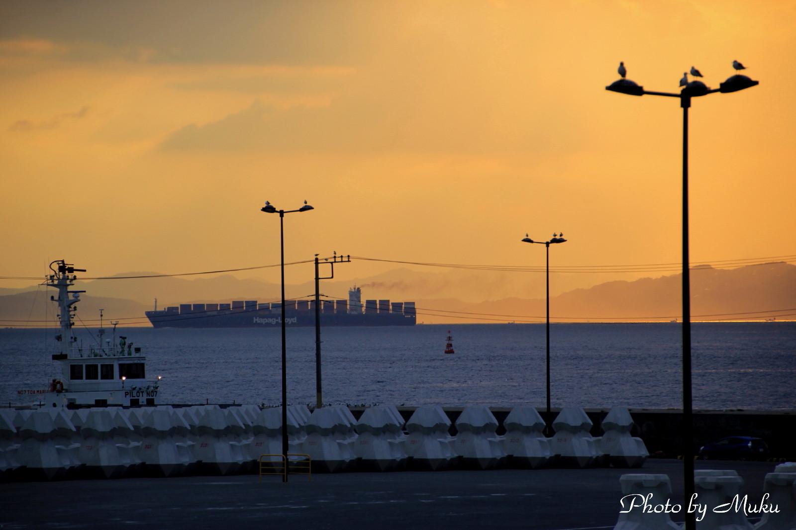 2014.9.24 夜明けの水道 (久里浜港:神奈川県横須賀市)
