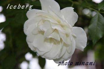 s_059_20110529210737.jpg