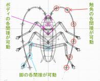 3D簡易ゴキブリワイヤーフレーム2