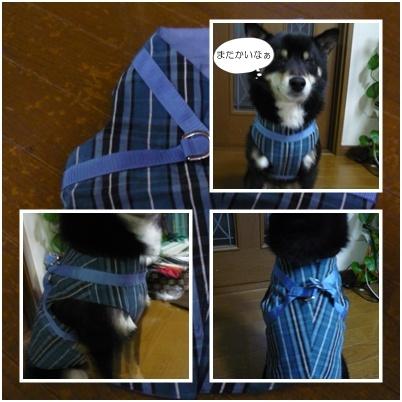 harufuku2_20110412111247.jpg
