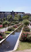 HTBバラ庭園