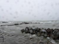 雨の標津港②