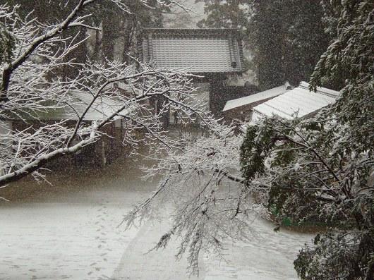 円覚寺境内1-20120229
