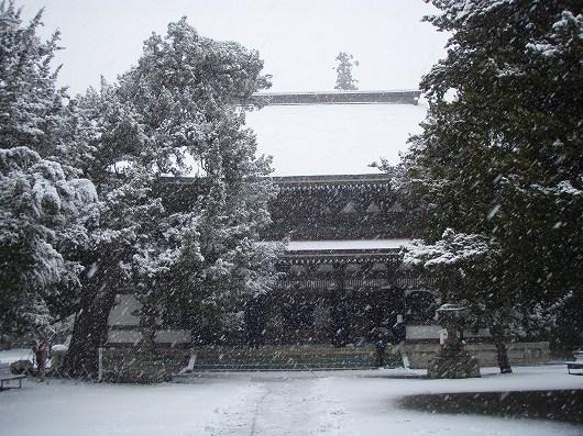 円覚寺仏殿1-20120229