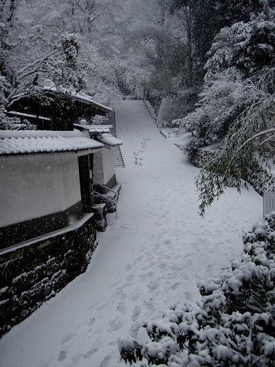 円覚寺仏日庵付近2012029