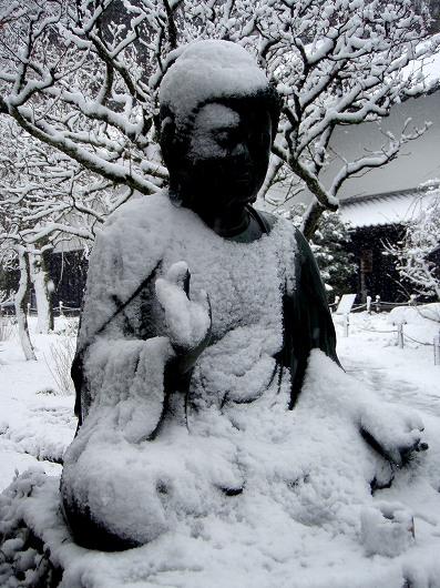 東慶寺露座仏20120229
