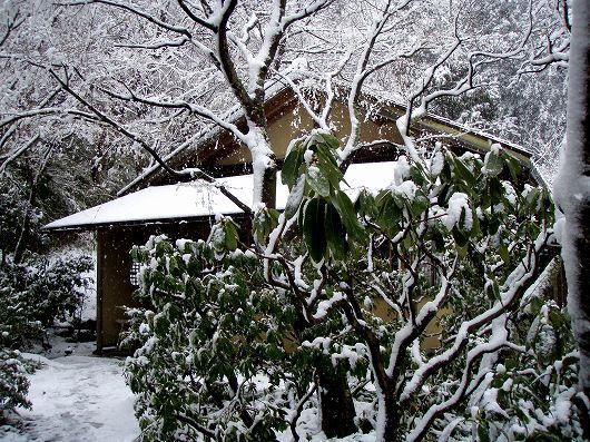 東慶寺白蓮舎20120229