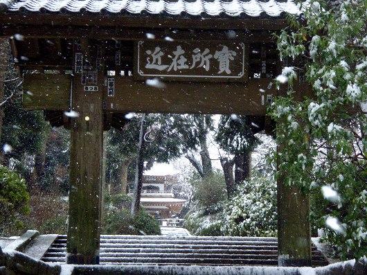 浄智寺総門より20120229