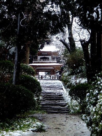 浄智寺山門を望む20120229