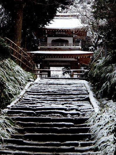 浄智寺山門20120229