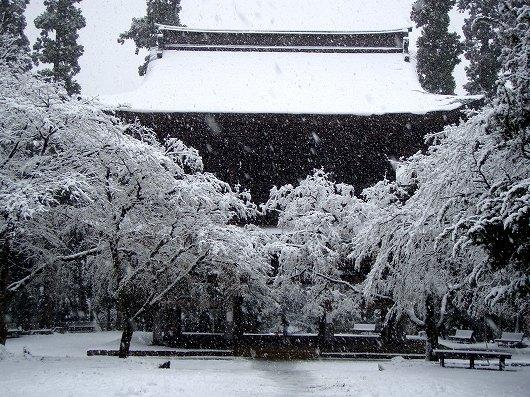 円覚寺三門3-20120229