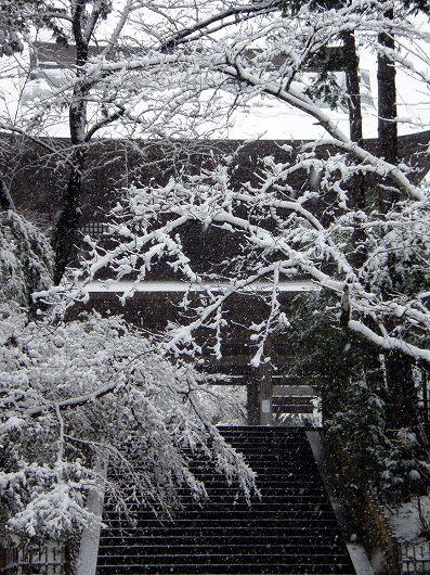 円覚寺三門5-20120229
