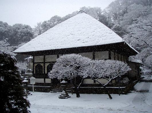 円覚寺選仏場3-20120229