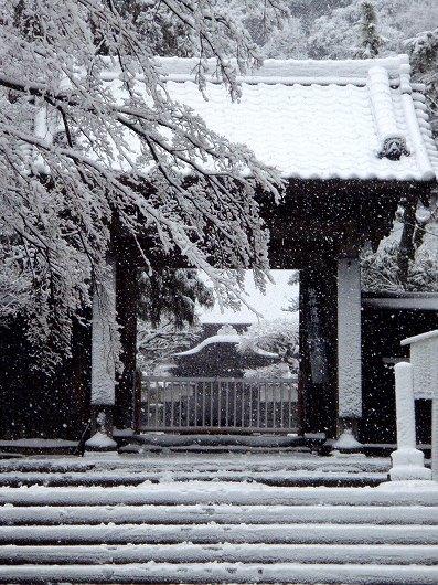 円覚寺正続院1-20120229