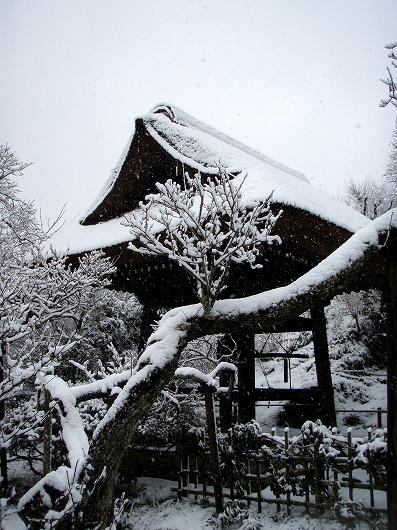 東慶寺鐘楼20120229