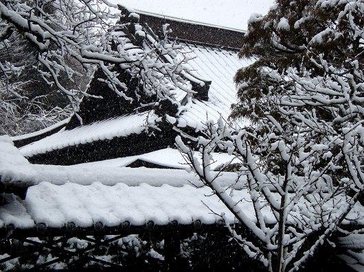 東慶寺書院の屋根20120229