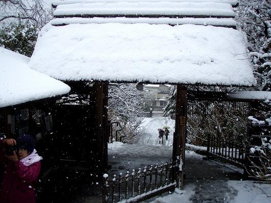 東慶寺山門20120229