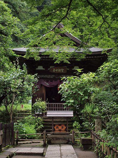 円覚寺黄梅院20120708