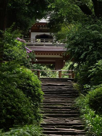 浄智寺山門20120708