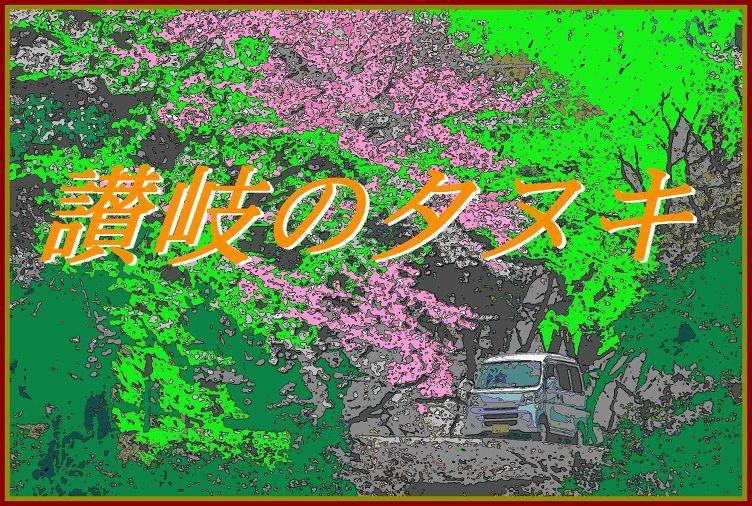 2011yasima 409 091