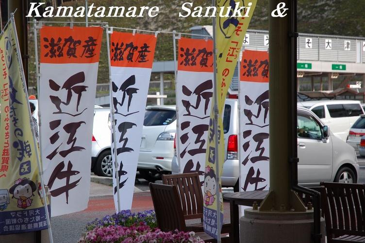 2011 kamatama 3戦目 083