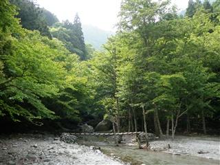 マスキ嵐沢