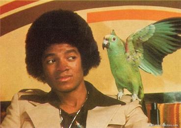 マイケルとオウム
