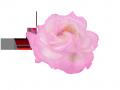 薔薇2 094のコピー3