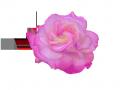 薔薇2 094のコピー5