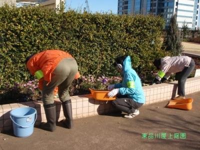 ボランティア花壇メンテ