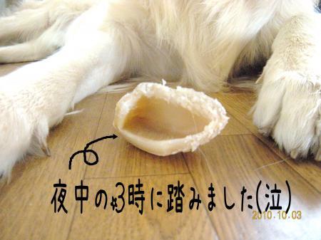 縺オ繧薙□2_convert_20101004132650