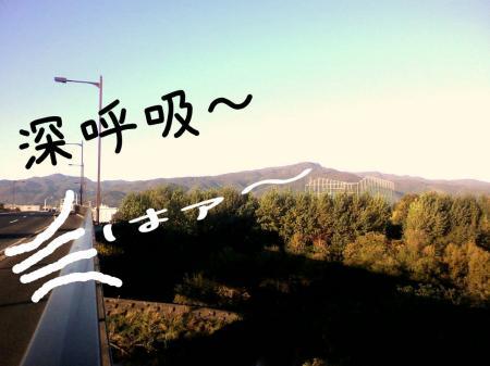 繧キ繝ウ繝・Ξ繝ゥ2_convert_20101007140146