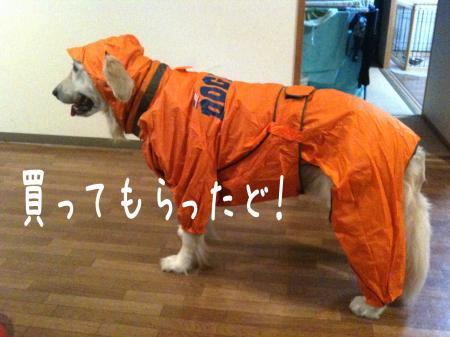繧キ繝ウ繝・Ξ繝ゥ4_convert_20101007140413