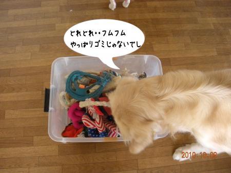 縺昴≧縺・_convert_20101010095120